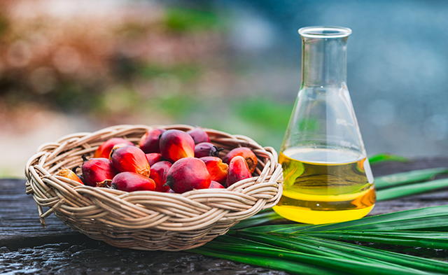 Palm Fruit Oil Natural Vitamin E