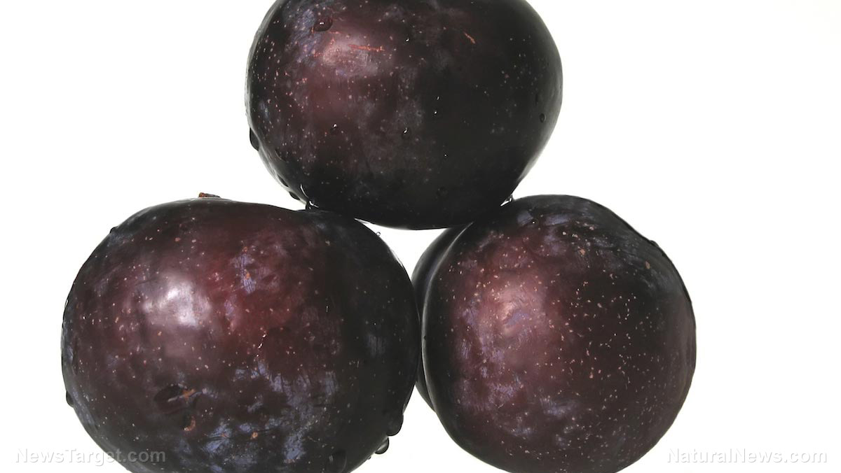 Plums – sources, health benefits, nutrients, uses and ...