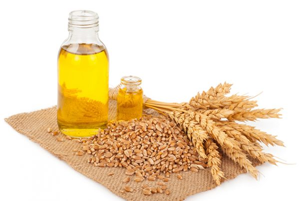 Wheat Germ – sources, health benefits, nutrients, uses and